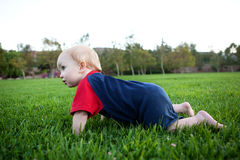 Baby crawling in the grass Stock Images