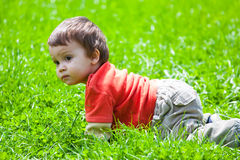 Baby crawling in grass. Cute baby boy crawling outdoors in grass Royalty Free Stock Photo