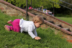 Baby crawling on the grass Stock Image