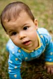 Baby Crawling on Grass Royalty Free Stock Image