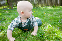 Baby Crawling on Grass Stock Images