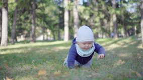 Baby crawling on the grass in the park. stock footage