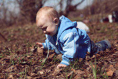 Baby is crawling in the meadow. Royalty Free Stock Photo