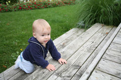 Baby crawling outside Stock Images