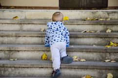 Baby crawling up the stairs. Baby boy crawling up the stairs royalty free stock image