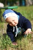 Baby crawls on the grass Stock Images