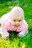 Baby creeping on grass. Smiling and looking at camera royalty free stock photo