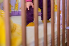 Baby in a crib. Stock Image