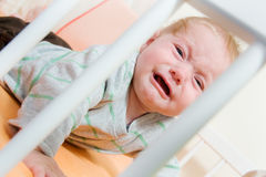 Baby in the crib Stock Image