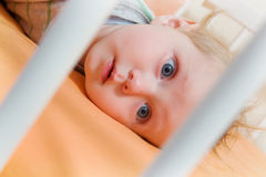 Baby in the crib Stock Photography