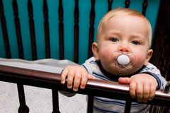 Baby in crib. Baby boy in crib with pacifier Stock Photography