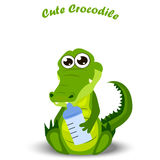 Baby crocodile or alligator. Very high quality original trendy illustration of a baby crocodile or alligator with diaper Stock Photo