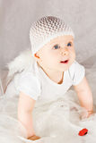 Baby cupid with angel wings Stock Photos