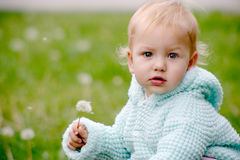 Baby with dandelion. Small child holding a dndelion and sitting on the grass stock images