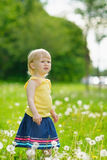 Baby on dandelions field looking on copy space Stock Photos