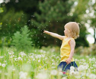 Baby on dandelions field pointing on copy space Royalty Free Stock Photos