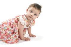Baby, das auf den Boden in einem schönen Kleid kriecht Stockbilder