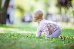 Baby, das auf Rasen im Park kriecht und beiseite etwas betrachtet lizenzfreie stockbilder