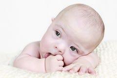 Baby, das Daumen saugt stockbilder