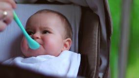 Baby, das in der Natur isst stock video footage