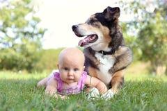 Baby, das draußen mit Haustier-Schäferhund Dog legt Stockfotos