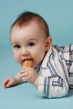 Baby, das ein Plätzchen isst Stockbild