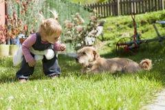 Baby, das einem Hund sich nähert Stockbild