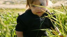 Baby, das mit Löwenzahn auf einem grünen Gebiet im Sommer steht stock video