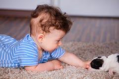 Baby, das mit Welpen spielt Lizenzfreie Stockbilder