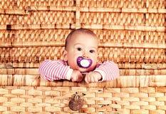 Baby in de doos stock fotografie