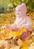 Baby in de gele bladeren Stock Foto's