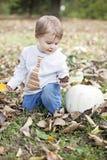 Baby in de Herfstaard Royalty-vrije Stock Afbeeldingen