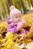 Baby in de herfstbos Stock Afbeeldingen