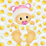 Baby in de madeliefjes Stock Fotografie