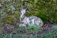 baby deer metal Royalty Free Stock Images