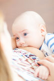 Baby in den Armen der Mutter säugt Stockfotografie