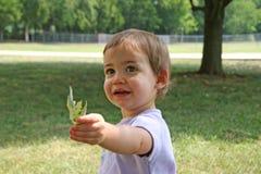 Baby die Blad geeft Royalty-vrije Stock Afbeeldingen