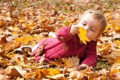 Baby die de herfstbladeren ontdekken Stock Foto