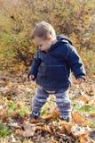 Baby die in de herfstpark leren te lopen Stock Afbeeldingen