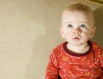 Baby die omhoog kijkt Royalty-vrije Stock Afbeeldingen