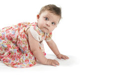 Baby die op de vloer in een mooie kleding kruipen Stock Foto