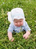 Baby die op de weide kruipt Royalty-vrije Stock Afbeelding