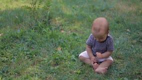 Baby die op gras situeren stock videobeelden