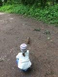 Baby die pluizige rode eekhoorn voeden Stock Fotografie