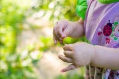 Baby die in roze kleding een blad houden Selectieve nadruk Stock Foto's