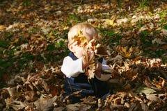 Baby in de herfst Stock Foto