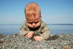 The baby digs a hole in sand Stock Photos