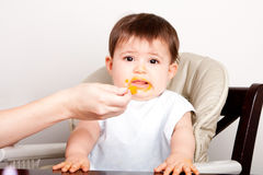 Baby dislikes food expressing disgust. Cute baby infant boy girl expresses dislike disgust for food fed by spoon Stock Images