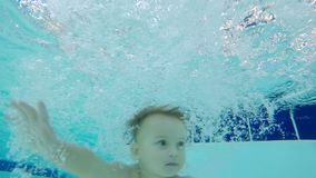 Baby is diving into the swimming pool. 4K stock video footage
