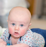 Baby does tummy time! Stock Images